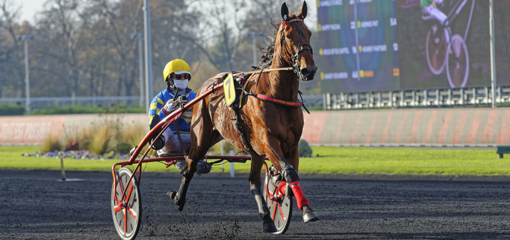 La Finale du Grand National du Trot Paris-Turf possible tremplin vers les Prix d'Amérique Races ZEturf