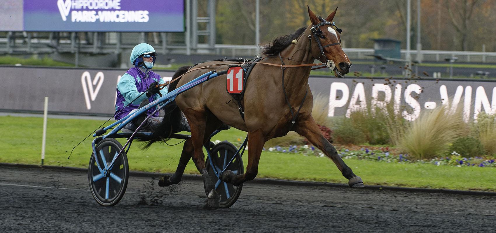 Prix d'Amérique Races ZEturf QUALIF #3 and #4: the likely starters