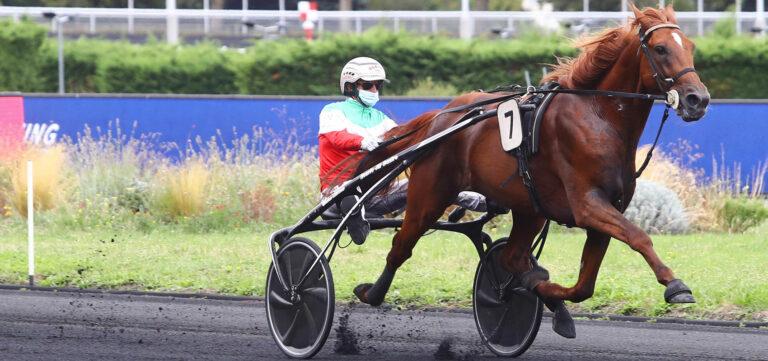 Prix d'Amérique Races ZEturf: like an Italian perfume