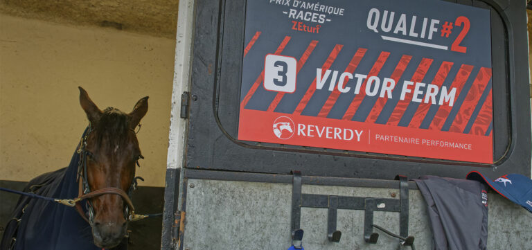 Champions news after Prix d'Amérique Races ZEturf Qualif #2