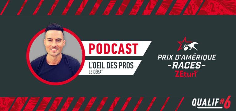 L'oeil des Pros analyse Qualif#6 PRIX D'AMÉRIQUE RACES ZEturf