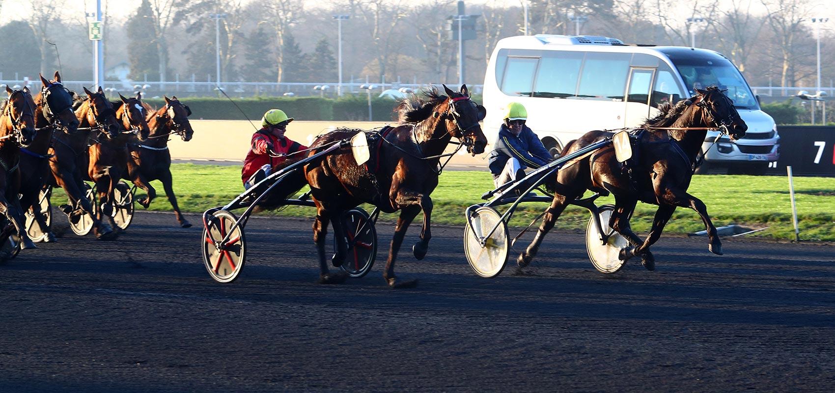 Bird Parker Prix d'Amérique Races ZEturf QUALIF #6 Prix de Belgique