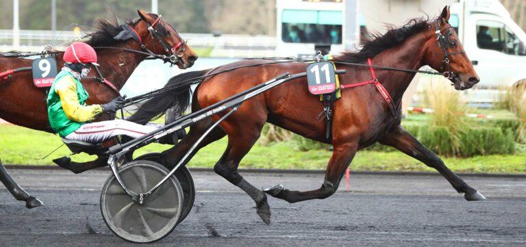 davidson du pont prix d'amérique Races ZEturf QUALIF #6 Prix de Belgique