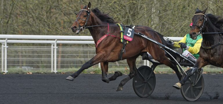 Davidson du Pont Prix d'Amérique Races ZEturf QUALIF #6