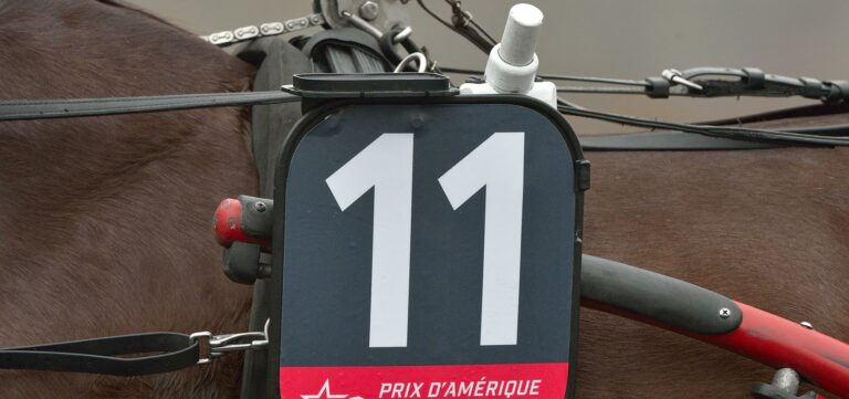 technologie tracking courses au trot